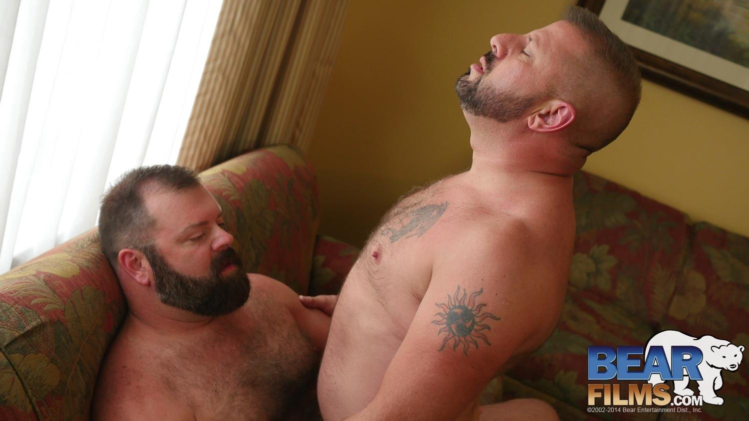 Amateur gay bear sex